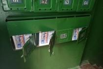 Воронежские единороссы дали фальстарт пиару «добрых дел»