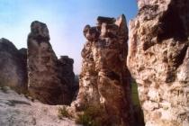 Воронежское Дивногорье внесли в предварительный список ЮНЕСКО