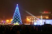 Участник торгов на главную ель Воронежа заявил о затягивании с выбором победителя