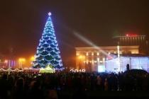 В Воронеже на обеспечение порядка в Новый год потратят 2,3 млн рублей