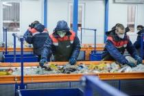 В Воронежской области заключенных привлекут к мусоропереработке