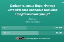 Иногородние участники скомпрометировали голосование за названия воронежских улиц