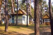 Депутаты воронежской гордумы хотят восстановить турбазу «Росинка»