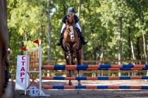 Воронежцы смогут бесплатно посмотреть соревнования по конному спорту