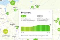 Яндекс дал Воронежу самую высокую оценку самоизоляции среди миллионников
