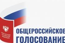 Воронежцы смогут защитить новой Конституцией детей и брак