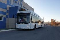 В Воронеж приехали 20 автобусов для «Автолайна» Дмитрия Крутских