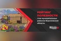 В Воронежской области составят рейтинг полезности глав муниципальных районов