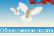 Воронежская общественная палата обзаведется собственным  аппаратом