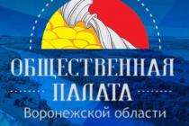 В Воронежской области создали казенное учреждение для общественников