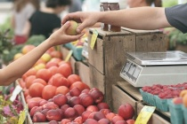 В Воронеже депутаты планируют отдать в частные руки «Северный рынок»