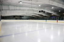 Строительство ледовой арены под Воронежем оценили в 384,8 млн рублей