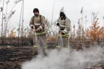 Воронежские спасатели за сутки локализовали пожары на 200 га