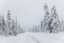 УФАС остановило подписание контрактов на обслуживание воронежских дорог