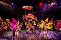 Воронежцы увидят цирковое шоу с участием более ста животных