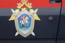 Глава воронежского СК отменил первое уголовное дело в отношении Павла Пономарева