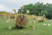Московская фирма разработает концепцию воронежского фестиваля «Город-сад»