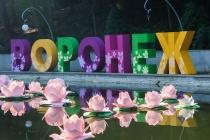 Воронежский центральный парк подготовит к фестивалю «Город-Сад» прежний подрядчик