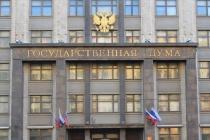 Воронежский депутат не сумел убедить Госдуму в отмене посадок за репосты