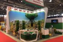 Организация участия Воронежской области в аграрной выставке на ВДНХ обойдется бюджету в 4 млн рублей