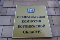 В Воронежской области на выборах губернатора пока проголосовал каждый четвертый избиратель