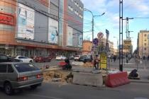В Воронеже до конца года вернут зебру у «Атмосферы»