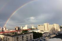 В Воронежской области объявили о сроках нового этапа снятия ограничений