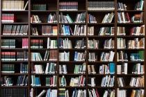 Воронежская школа «Репное» проведет семинар в поддержку книжного фестиваля