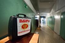 Следователи выяснят, были ли вбросы на выборах в Липецкой области