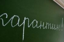 Директоры воронежских школ вовремя не отпустили детей на карантин