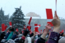 Шесть сотен воронежцев выдвинули Алексея Навального в президенты