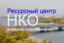 Президентский Совет нашёл слабые места воронежских НКО