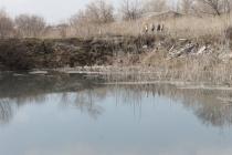 Под Воронежем предприятия сливают отходы в овраг