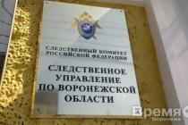 В воронежском следственном управлении началась проверка по делу Павла Пономарева