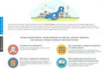 Воронежские власти направили на план развития сайта для бизнеса 1,3 млн рублей