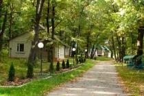 Воронежские власти выставили на продажу базу отдыха в заповеднике