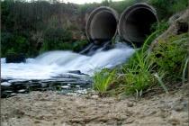 В Воронежской области чиновники не знакомы с природоохранным законодательством