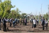 Власти региона добавили Воронежу 62 млн рублей на комфортную среду