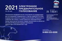 Сайт предварительного голосования «Единой России» в Воронеже не выдержал напора DDoS-атаки