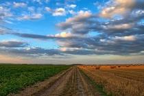 На ремонт сельских дорог в Воронежской области потратят 2,7 млрд рублей