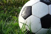 Воронеж встретит чемпионат мира по футболу «сухим законом»
