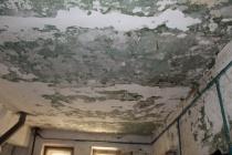 Столетний воронежский дом дождется полного капремонта в 2044 году