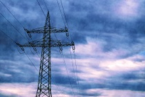 На электроснабжение свинокомплекса «Агроэко» в Воронежской области добавят 596,3 млн рублей