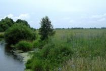 Тамбовская область признана лидером экологического рейтинга регионов