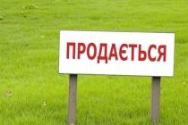 Воронежский ДИЗО не отдал «Выбору» сельскохозяйственную землю