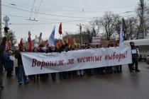 Воронежцы выступили за возвращение прямых выборов мэра
