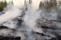 Александр Гулягин проверит причины возгораний в пригородах Воронежа