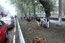 Ремонт в воронежском Комсомольском сквере подешевел на 900 тыс. рублей