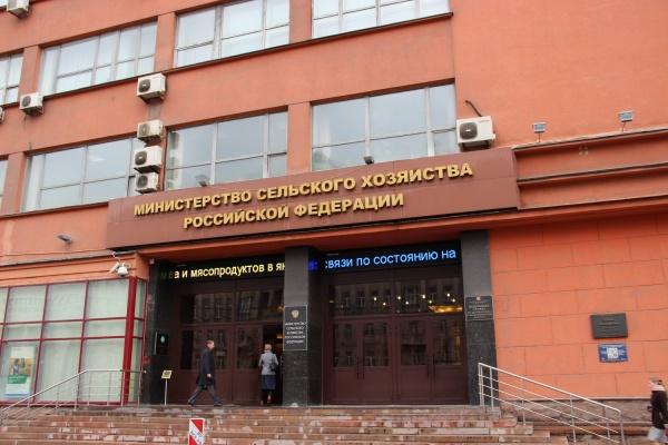 «Независимую экологическую экспертизу проведут за счет Воронежской администрации»