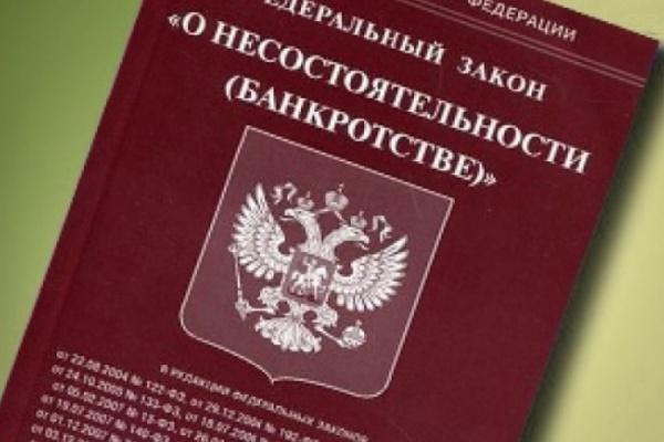 За год  количество предприятий–банкротов в Воронежской области выросло в  полтора раза